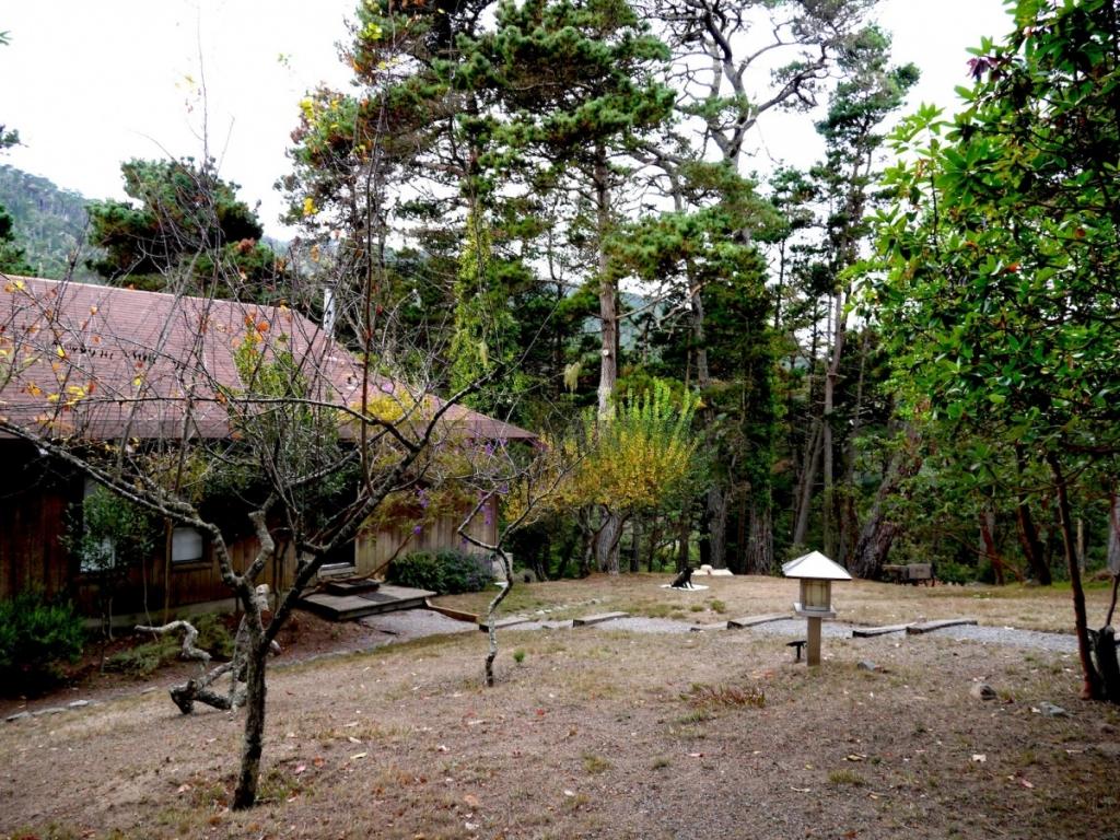 舊金山近郊兩日遊(一):伊凡尼斯小鎮森林民宿